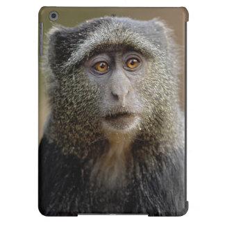 Sykes o mono azul, mitis del Cercopithecus, Funda Para iPad Air