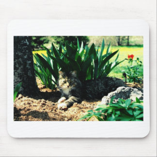 Sylvester 3 mouse pad