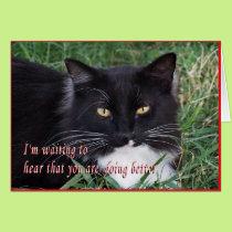 Sylvester-Get Well-customize Card