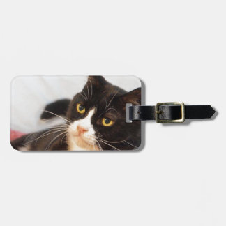 Sylvester Luggage Tag
