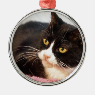 Sylvester Metal Ornament