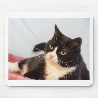 Sylvester Mouse Pad