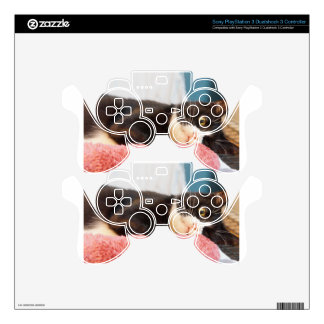 Sylvester Skins For PS3 Controllers