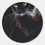 Sylvester Sticker