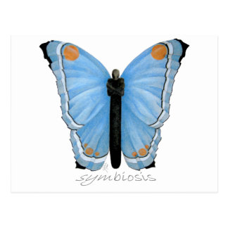Symbiosis Butterfly Postcard