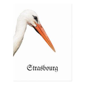 Symbol Of Strasbourg, Alsace Postcard