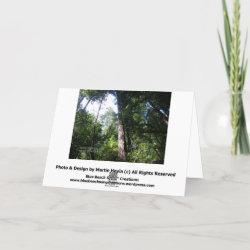 Sympathies - Redwoods - Card