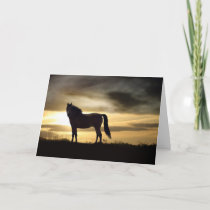 Sympathy Card for Loss of Horse