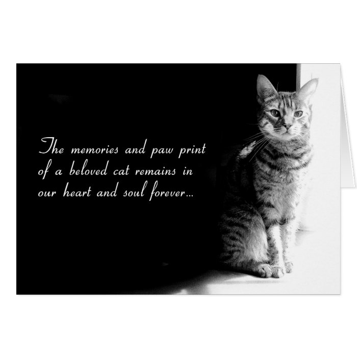 Image Result For Pet Sympathy Cards