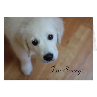 Sympathy card, I'm Sorry for...