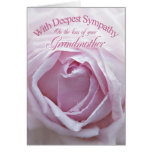 Sympathy for loss of Grandmother, a  pink rose Greeting Card