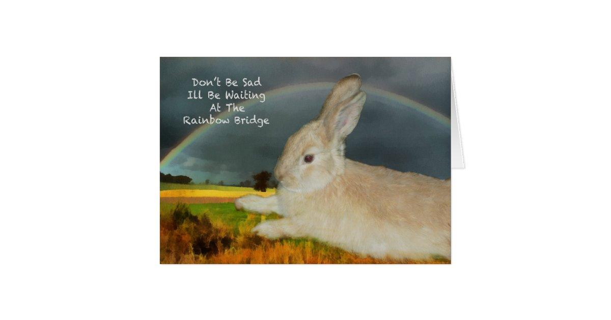 Rabbit Birthday Invitations with good invitation example