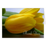 Sympathy / Funeral Thank You Card