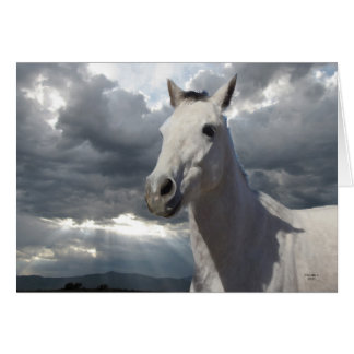Sympathy in Your Loss - Horse Lover Greeting Cards