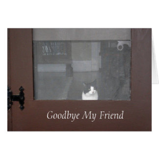 Sympathy: Loss of Cat, Friend, Pet Loss Card