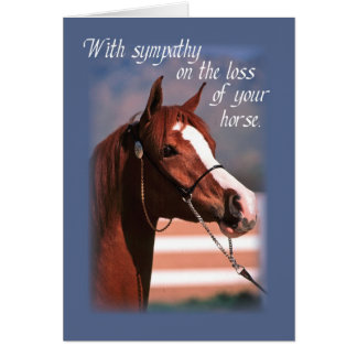 Sympathy Loss of Horse, Blue Cards