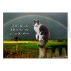 Sympathy - Loss of Pet  Cat Card