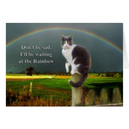 Sympathy Dog Quotes: Sympathy - Loss Of Pet Cat Card