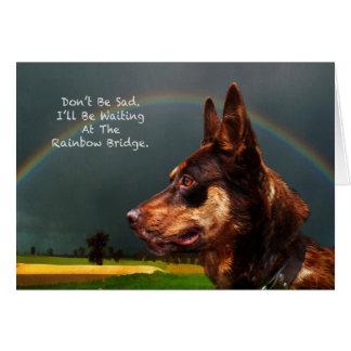 Sympathy - Loss of Pet Dog Greeting Card