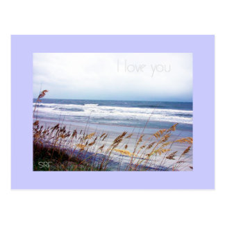 Sympathy Message Postcard
