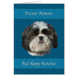 Sympathy On Loss Of Pet, Shih Tzu Dog Card at Zazzle
