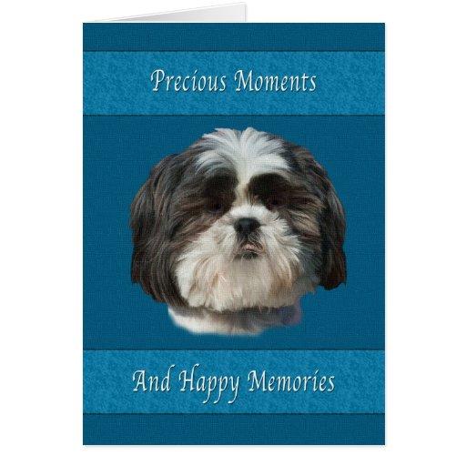 Sympathy on Loss of Pet, Shih Tzu Dog Greeting Cards