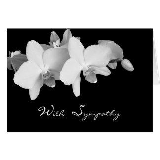 Sympathy or Condolence Card -- Orchids