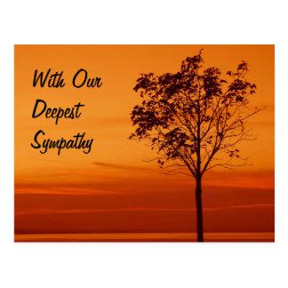 Sympathy - Postcard