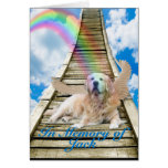 Sympathy - Rainbow Bridge - Golden Retriever Greeting Cards