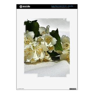 Sympathy Skin For iPad 3