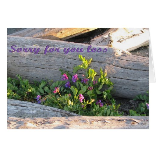 Sympathy - Sorry for your loss Card