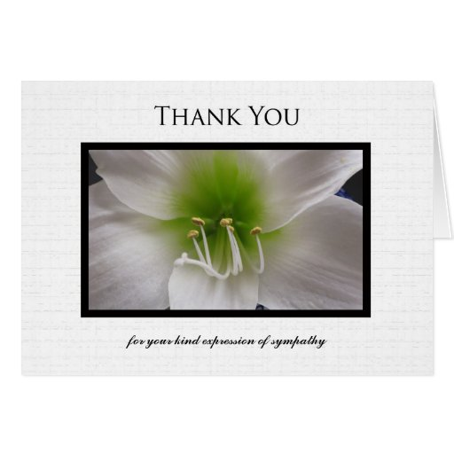 Sympathy thank you note card white amaryllis zazzle for Thank you note for condolence gift