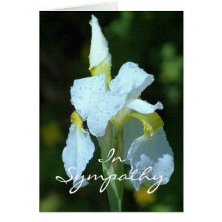 SYMPATHY/WHITE IRIS WITH RAINDROPS/SO SORRY FOR LO CARD
