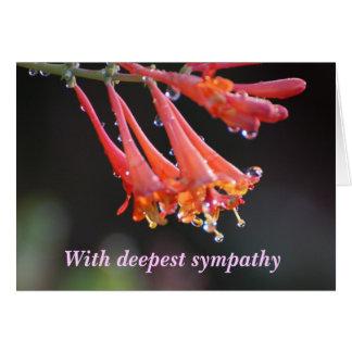 Sympathy - With deepest sympathy penstemon Card