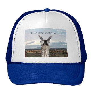 Sympathy: You Are Not Alone Llama Trucker Hat