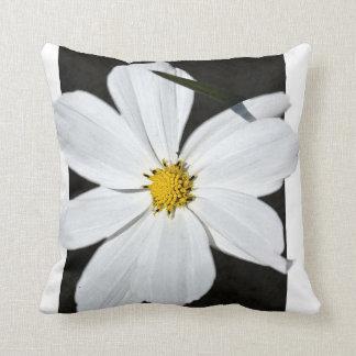Symphyotrichum Racemosum - Throw Pillow