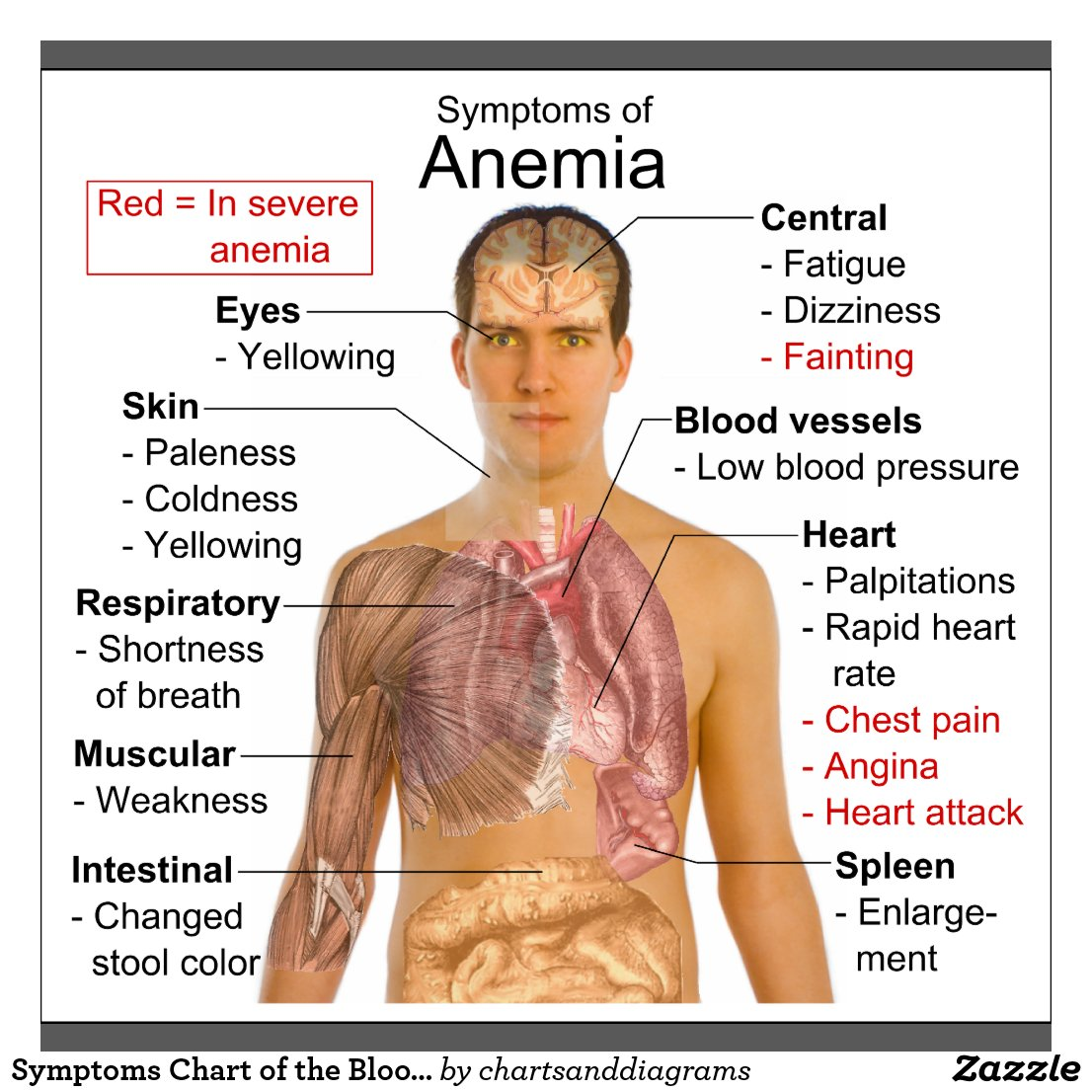 Symptoms Chart of the Blood