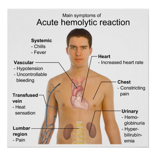 symptoms of acute hemolytic transfusion reaction poster