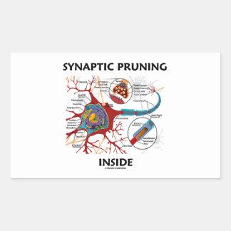 Synaptic Pruning Inside Neuron Synapse Geek Humor Rectangular Sticker
