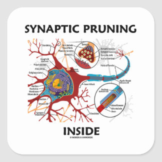 Synaptic Pruning Inside Neuron Synapse Geek Humor Square Sticker