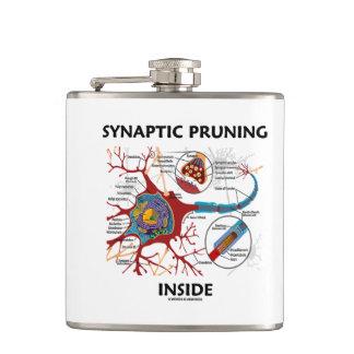 Synaptic Pruning Inside Neuron Synapse Neurology Flask