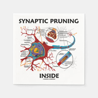 Synaptic Pruning Inside Neuron Synapse Paper Napkin