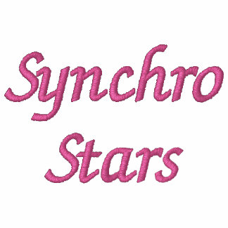Synchro Stars Embroidered Hoodie