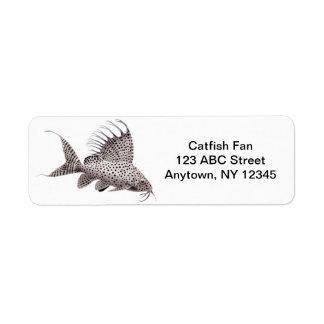 Synodontis Catfish Avery Label