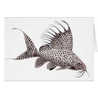 Synodontis Catfish Greeting Card