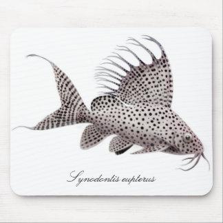 Synodontis eupterus mouse pad
