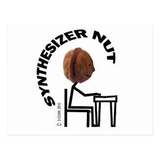 Synthesizer Nut Postcard