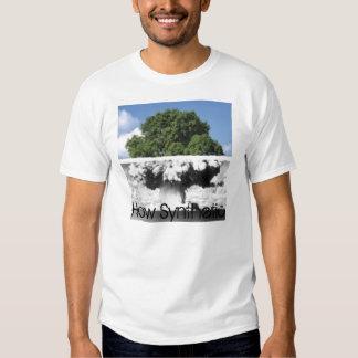 Synthetic Scenery Tshirts