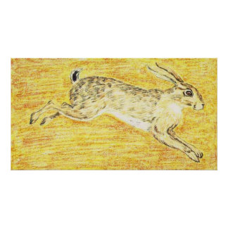 Syrian Hare Poster