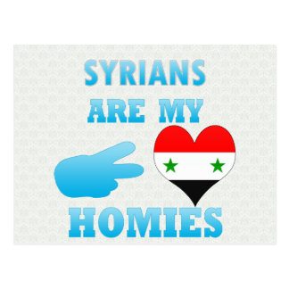 Syrians are my Homies Post Card